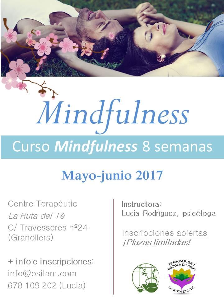 curso mindfulness 8 semanas